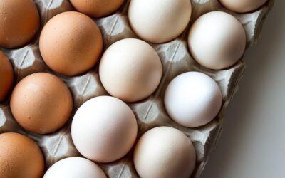 Kolesterol og diabetes – Det skal du vide.